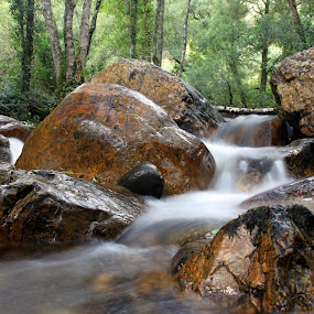 Stones in the river by Gil Reis - Nature Up Close Rock & Stone ( water, explore, nature, portugal, rivers, stones, rocks )