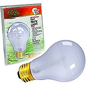 day-white-light-bulb[1]