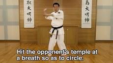 Lifelong Kyokushin Karate 08のおすすめ画像2