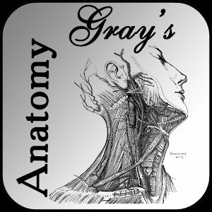 Cover art Grays Anatomy 2012