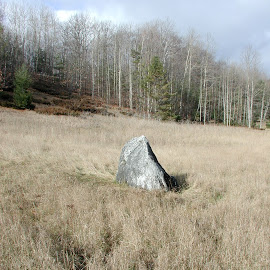 Field Stone by Gregory Smith - Landscapes Prairies, Meadows & Fields