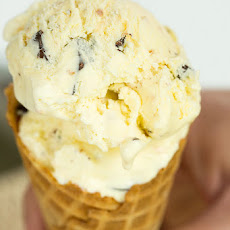Toasted Coconut Dark Chocolate Chunk Ice Cream