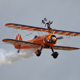 Wing Walker by Tim Clifton - Transportation Airplanes