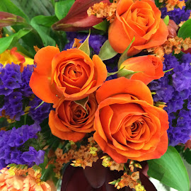 Roses by Clara Scarano Scubla - Novices Only Flowers & Plants ( orange, purple, roses )