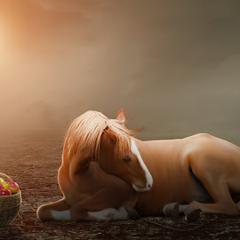 Without you,no hungry! by Mulya Net - Digital Art Animals