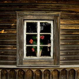 Window by Renatas Valkiūnas - Buildings & Architecture Architectural Detail