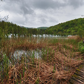path in the woods by Gergana Stefanova - Landscapes Travel ( plitvice, national park, pathway, croatia, lake, landscape, woods )
