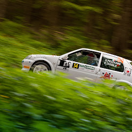 Rally ! by Giacomo Osso - Transportation Automobiles ( rally, rally day, d700, 2.8, 24-70, pp, nikon, italy )