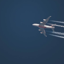 Emirates A380  by Nil Jay - Transportation Airplanes ( flying, flight, contrails, plane, airplanes, airplane, aircraft )