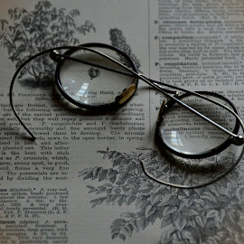 The Spectacles by Phil Robson - Artistic Objects Healthcare Objects ( glasses, vintage, spectacles, harry potter, bookworm )