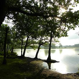 6:45 am in Britain, springtime - Pen Ponds, Richmond by The Man in the Maze - City,  Street & Park  City Parks ( england, uk, london, lake, pen pond, richmond park, early morning )
