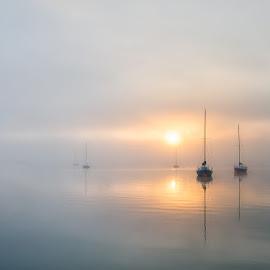Boats by Magdalena Widegren - Landscapes Sunsets & Sunrises ( water, fog, blue, boats, sunrise, sun )