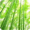 ArteLauncherTheme Green bamboo icon