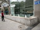 兴业银行门口的喷泉