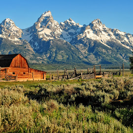 Mormon Row Majesty by Jeff Clow - Landscapes Mountains & Hills ( mountains, barn, landscape photography, western, travel, landscape, tetons, usa, rural, grand teton national park )