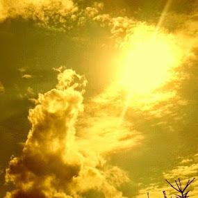 Golden Sunset by Nat Bolfan-Stosic - Landscapes Cloud Formations ( clouds, sky, village, sunset, gold )