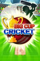 Screenshot of Big Cup Cricket Free