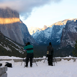 Photographers at Tunnel View by Wade Tregaskis - Landscapes Travel ( photographers, half dome, yosemite, el capitan, photographer, valley )