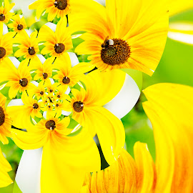Sunflower with Bee by Andrew Robinson - Digital Art Things ( droste, bee, sunflower, droste effect )