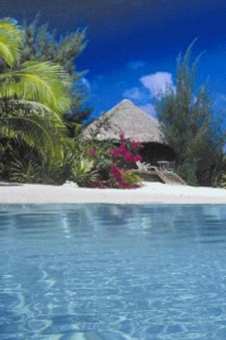 Caribbean Beach Live Wallpaper
