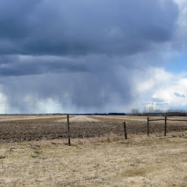 Spring Storm by Linda Doerr - Landscapes Weather ( clouds, field, storm, spring, rain,  )