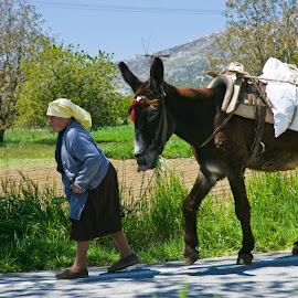 Going to market by Mike O'Connor - Transportation Other ( animals, market, woman, donkey, greece, transportation )