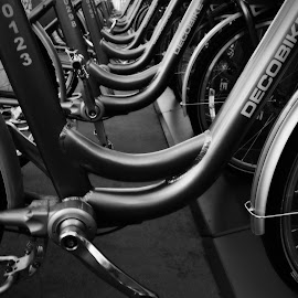 Let's Ride by Craig Carter - Transportation Bicycles ( abstract, patterns, urban landscapes, black and white, wheels, exercise, transportation, san diego, bicycles, aluminum, tires, pedals, downtown san diego,  )
