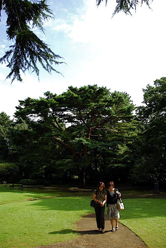Two obasans stroll along the path in Shizen Kyoiku Park