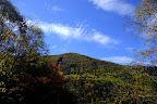 Foliage in the Natsugatake area of Nagano, Japan
