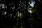 Darkness falls in Nagano