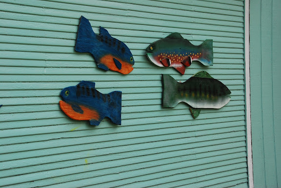 fish outside
