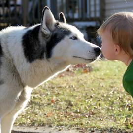 kisses.... by Susanne Carlton - Babies & Children Children Candids