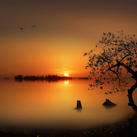 by  --iD-- . - Landscapes Sunsets & Sunrises
