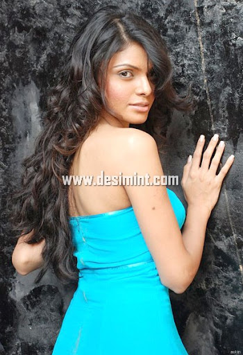 Hot Sherlyn Chopra Photos Gallery