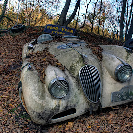 Old car by Greg Warnitz UE - Transportation Automobiles ( car, old, oldtime, decay, abandoned )