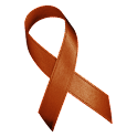 Awareness Ribbon - Brown icon