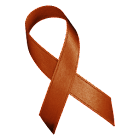 Awareness Ribbon - Brown icon