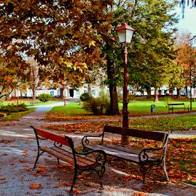 club stories by Branka Radmanić - City,  Street & Park  City Parks