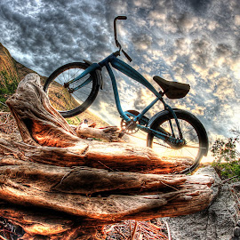 Driftwood Pedestal by Eric Demattos - Transportation Bicycles ( water, driftwood, bike, sunset, blue bike, river )