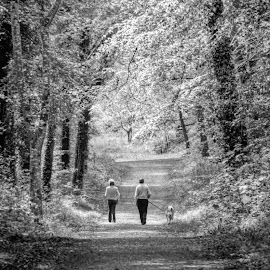 Morning Stroll by Joe Butler - People Couples