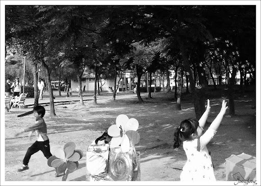 公園裡的一景