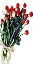 E vejo flores em você!!