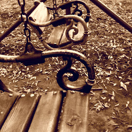 Swings by L.L. Vynterchilld - City,  Street & Park  City Parks ( sepia, park, sadness, swings, leaves, depression, autumn, fall, somber, artistic, resort, lonelyness, rusanda, vojvodina, spa )