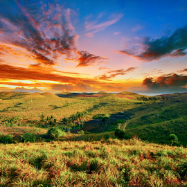 by Wisnu Taranninggrat - Landscapes Prairies, Meadows & Fields