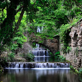 Dream garden by Mihaela Iordan - Landscapes Travel ( magic, green, waterfall, tavel, landscape, botanical, garden,  )