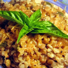 Lentil Casserole With White Wine