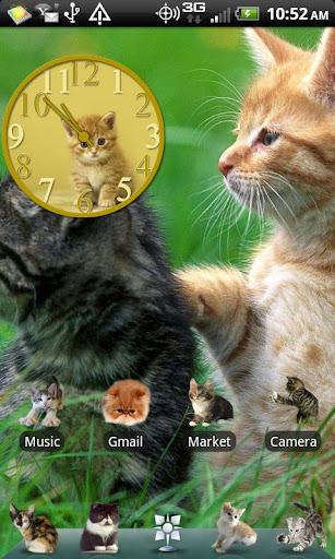 Kitten Theme