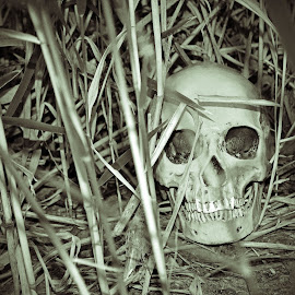 Death by Jeffrey Johnson - Novices Only Objects & Still Life ( old, life, black and white, death, dark )