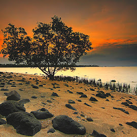 PEMUTERAN BEACH, BULELENG by Denny Iswanto - Landscapes Beaches