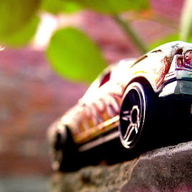 automobile model by Tushar Babbar - Novices Only Macro
